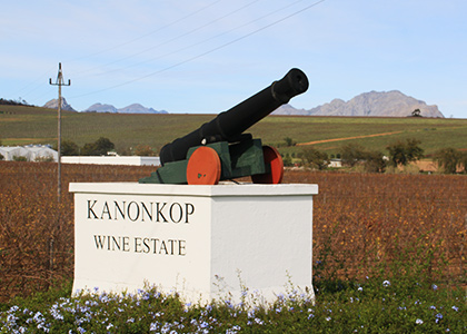 Hermanus Shuttle: Wine Tours to Stellenbosch, Franschhoek, Hermanus
