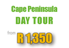 special-cape-peninsula-day-tour