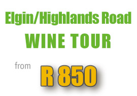 special-elgin-highlands-road-wine-tour-hermanus