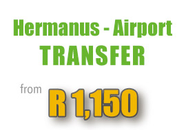special-hermanus-airport-transfer