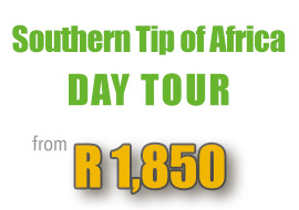 special-lagulhas-southern-tip-africa-guided-day-tour